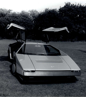 Alas de gaviota. Foto: Roger Stowers, 1980