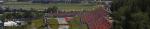 Formula 1 Rolex Grosser Preis Von Österreich 2020